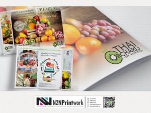 ออกแบบโบรชัวร์ Thai Orchard